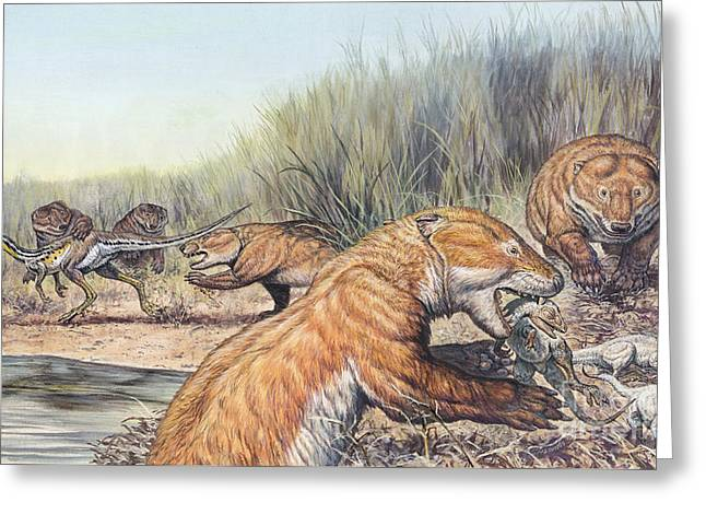 Repenomamus Mammals Hunting For Prey Greeting Card by Mark Hallett