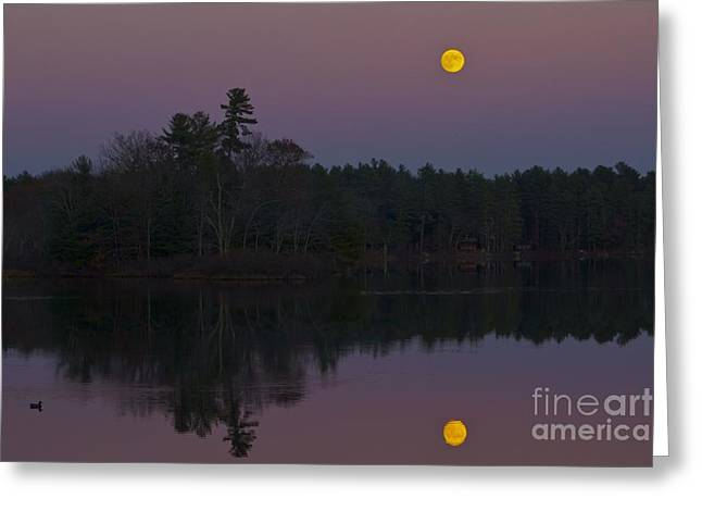 Replacing The Sunset II Greeting Card by Alice Mainville