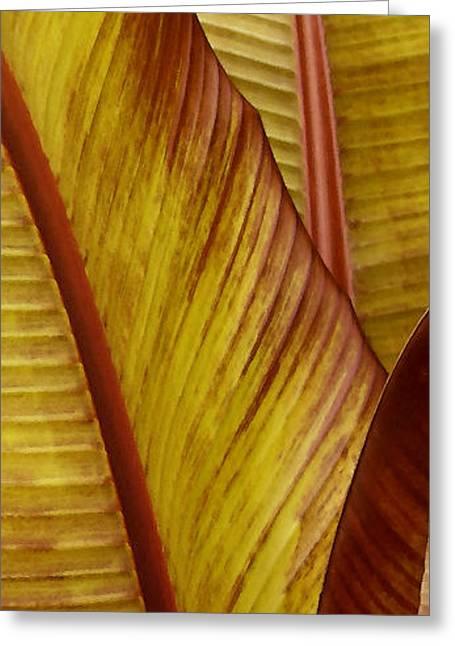 Repose - Leaf Greeting Card