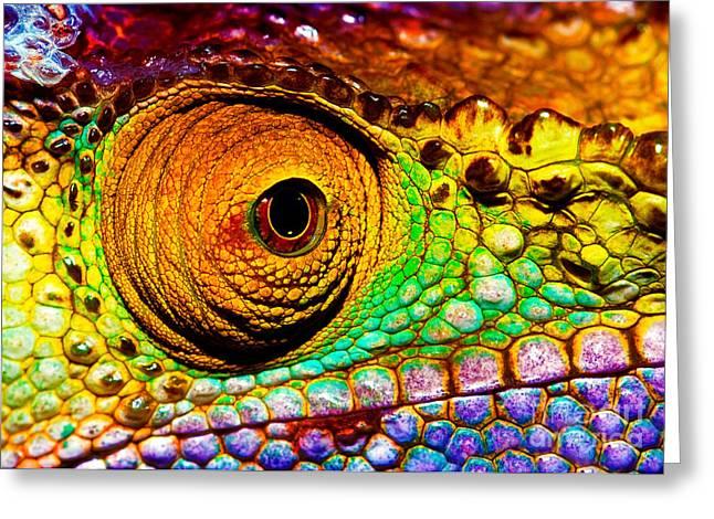 Reptilian Eye  Greeting Card by Anna Om