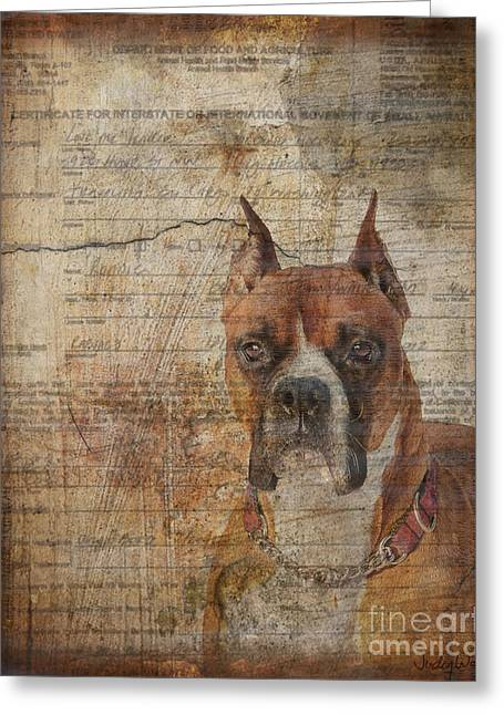 Rescued Greeting Card by Judy Wood