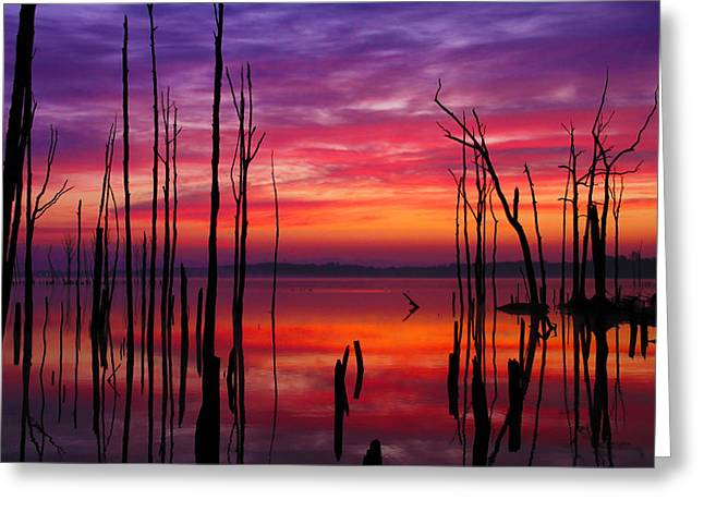Reservoir At Sunrise Greeting Card by Roger Becker