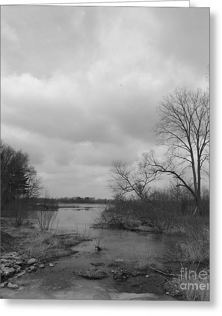 Reservoir In Winter  Greeting Card by Sara  Raber