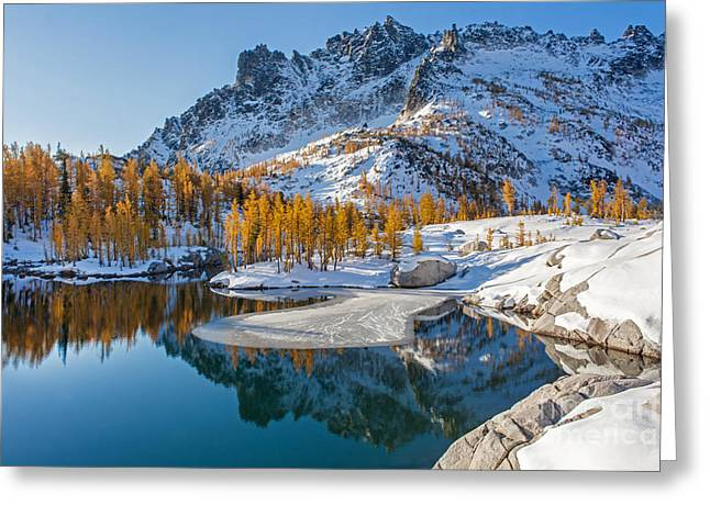 Resplendent Alpine Autumn Greeting Card by Mike Reid
