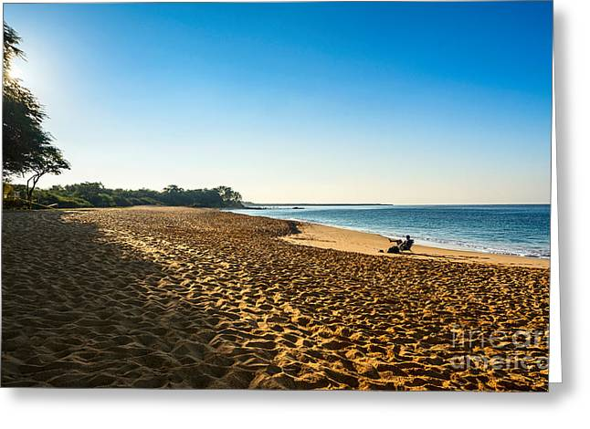 Rest And Relaxation Greeting Card by Jamie Pham