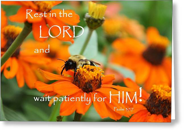 Rest In The Lord Greeting Card by Barbara Stellwagen