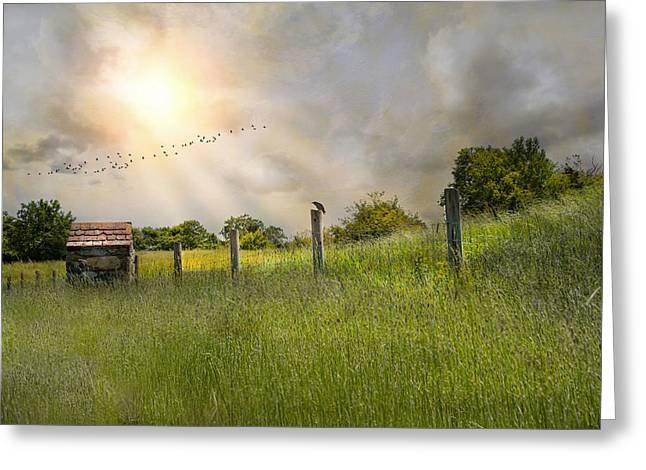 Rest Stop Greeting Card by Robin-Lee Vieira