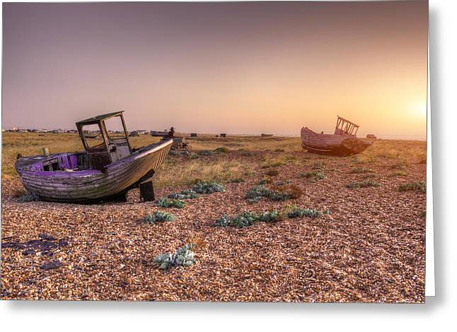 Rested Two Greeting Card by Jason Green