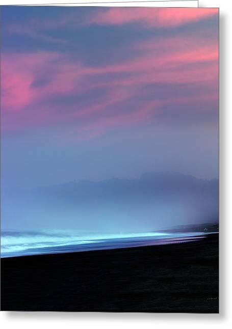 Restful Coastline Greeting Card by Leland D Howard