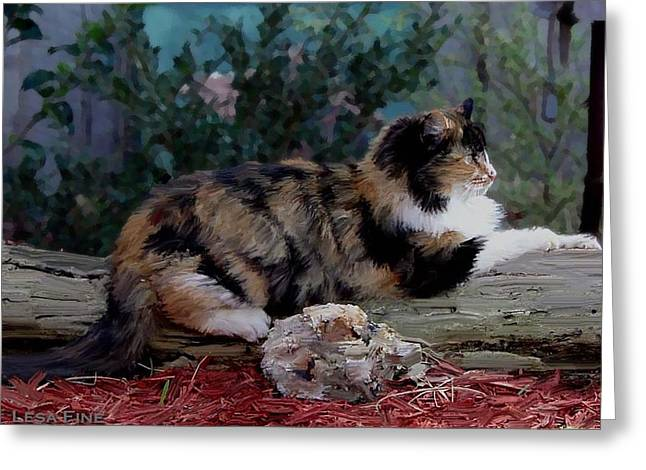 Resting Calico Cat Greeting Card by Lesa Fine