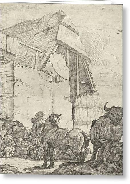 Resting Cattle On A Farm, Jan Van Ossenbeeck Greeting Card by Jan Van Ossenbeeck And Giovanni Giacomo Rossi