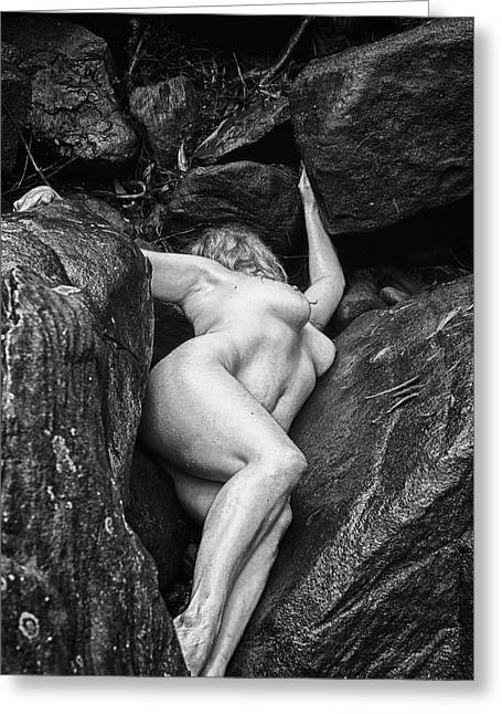 Resting On The Rocks Greeting Card