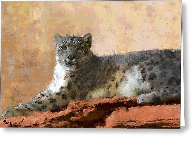 Resting Snow Leopard Greeting Card by Roger D Hale