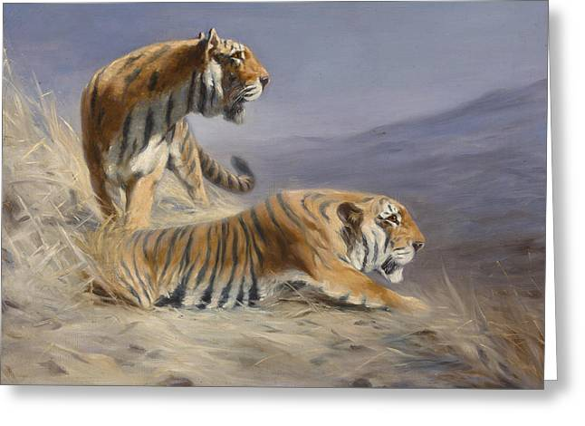 Resting Tigers Greeting Card