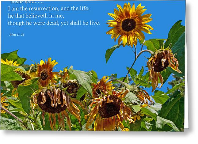 Resurrected Life Greeting Card