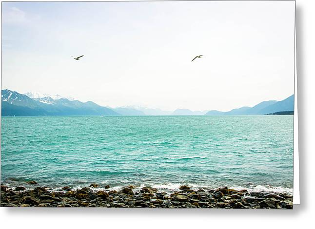 Resurrection Bay With Sea Gulls Greeting Card