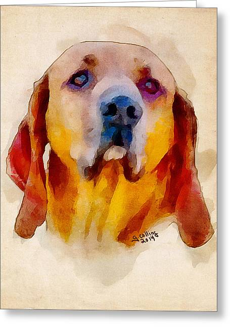 Retriever Greeting Card by Greg Collins