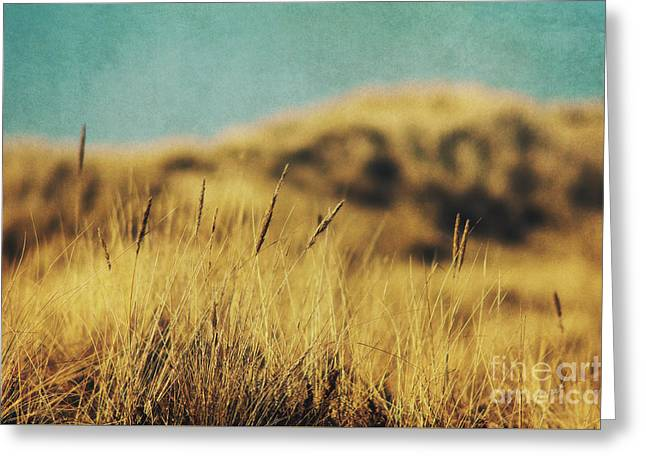 Retro Dunes Greeting Card by Angela Doelling AD DESIGN Photo and PhotoArt