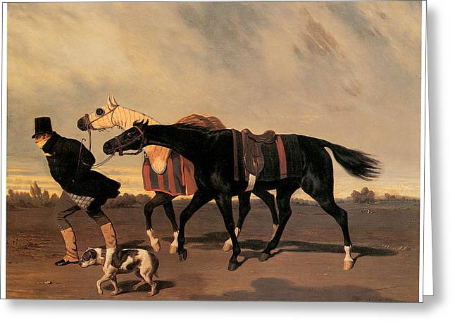 Return From The Race Greeting Card by Alfred De Dreux