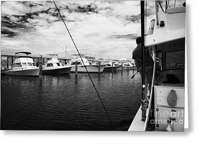 Returning Charter Fishing Boat Charter Boat Row City Marina Key West Florida Usa Greeting Card