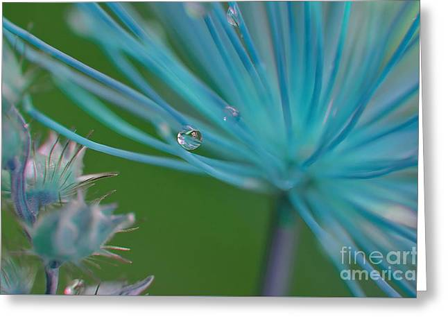 Rhapsody In Blue Greeting Card by Michelle Meenawong