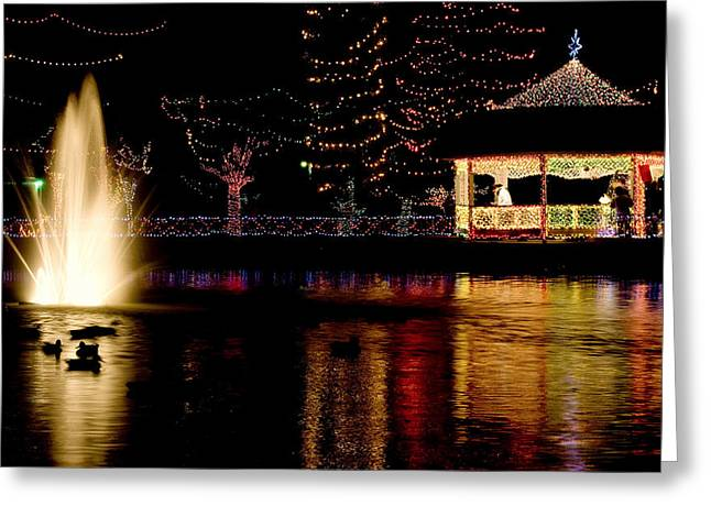 Rhema Christmas Lights - Duck Pond Greeting Card