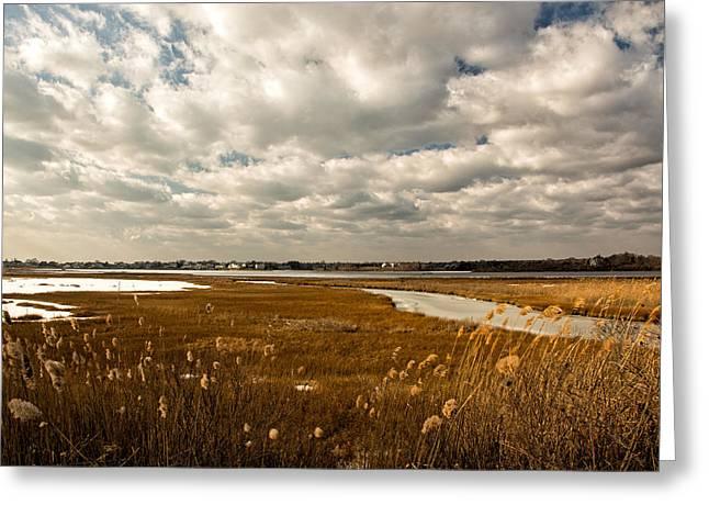 Rhode Island Marshes 1 Greeting Card by Nancy De Flon