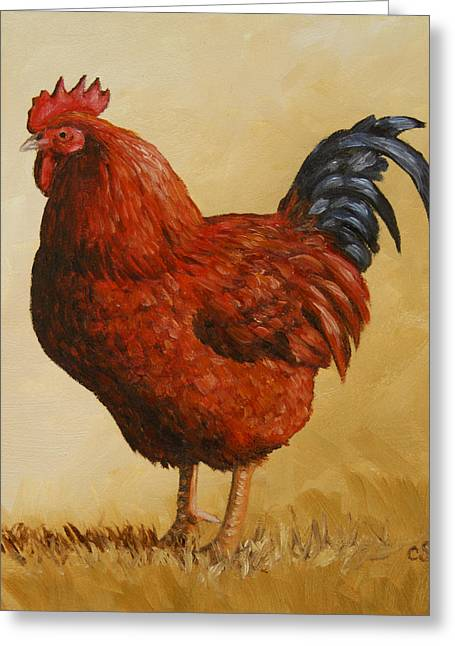 Rhode Island Red Rooster Greeting Card by Crista Forest