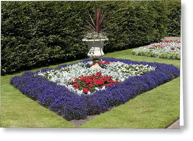 Rhs Wisley Garden, Surrey, Uk Greeting Card
