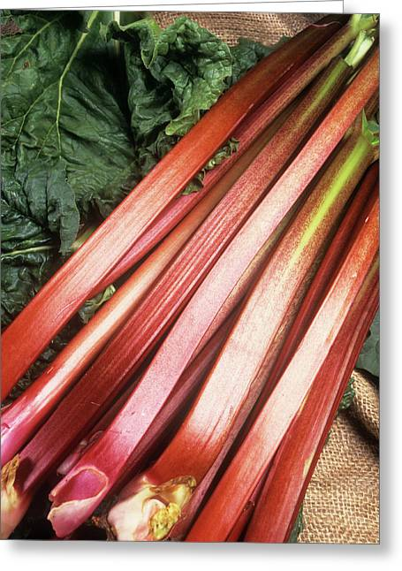 Rhubarb Greeting Card by Ray Lacey/science Photo Library