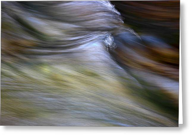 Rhythm Of The River Greeting Card by Michael Eingle