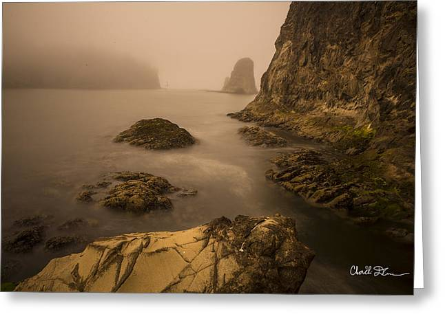 Rialto Beach Rocks Greeting Card