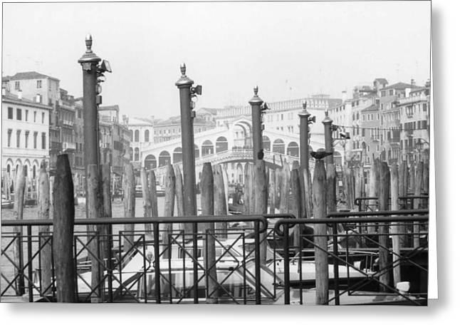 Rialto Bridge Venice Greeting Card by Dorothy Berry-Lound