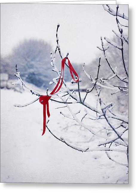 Ribbon In Tree Greeting Card by Amanda Elwell