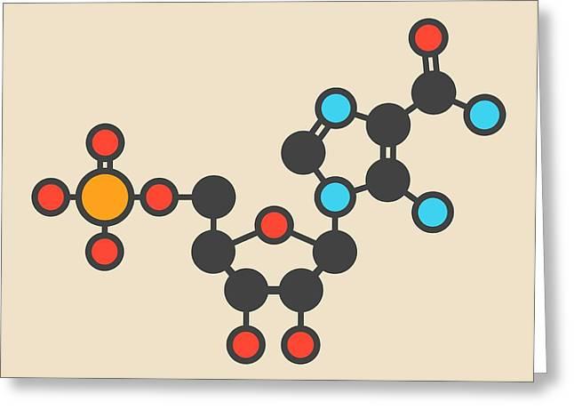 Ribonucleotide Molecule Greeting Card by Molekuul