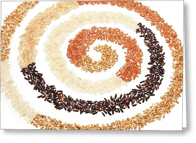 Rice Bran Types Greeting Card by Peggy Greb/us Department Of Agriculture