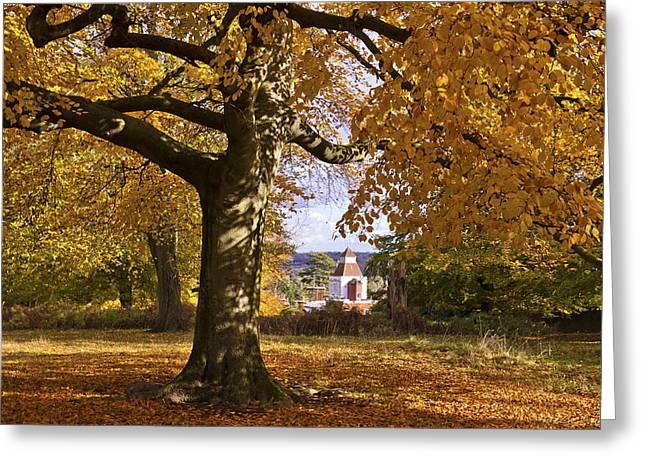 Richmond Autumn Greeting Card by Maj Seda