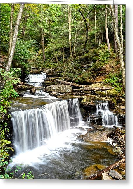 Ricketts Glen Delaware Falls Greeting Card by Frozen in Time Fine Art Photography