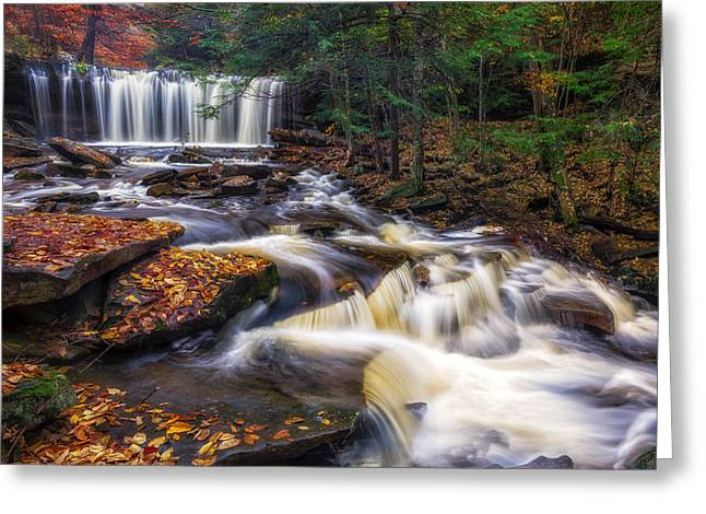 Ricketts Glen Oneida Falls Greeting Card