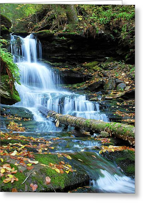 Ricketts Glen Hidden Waterfall Greeting Card