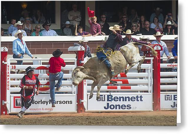 Ride Em Cowboy Greeting Card by Bill Cubitt