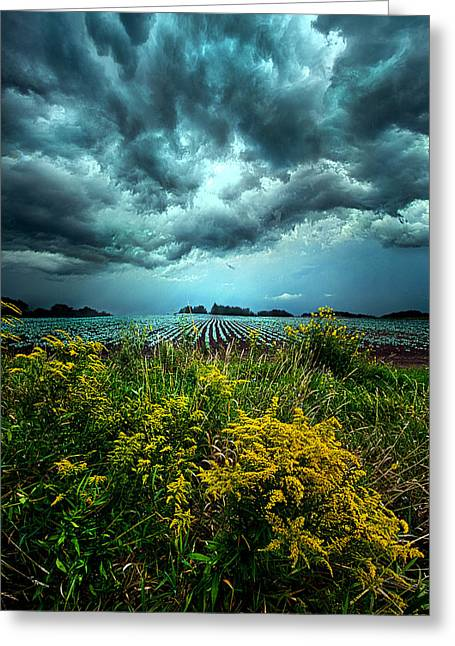 Riders On The Storm Greeting Card by Phil Koch