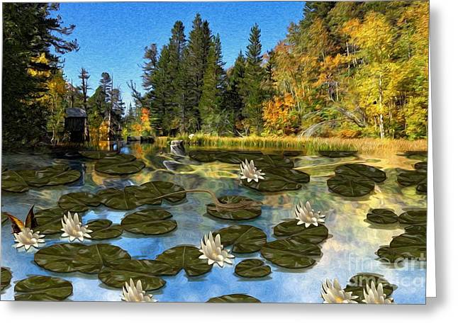 Riding The Lillypad Greeting Card by Liane Wright