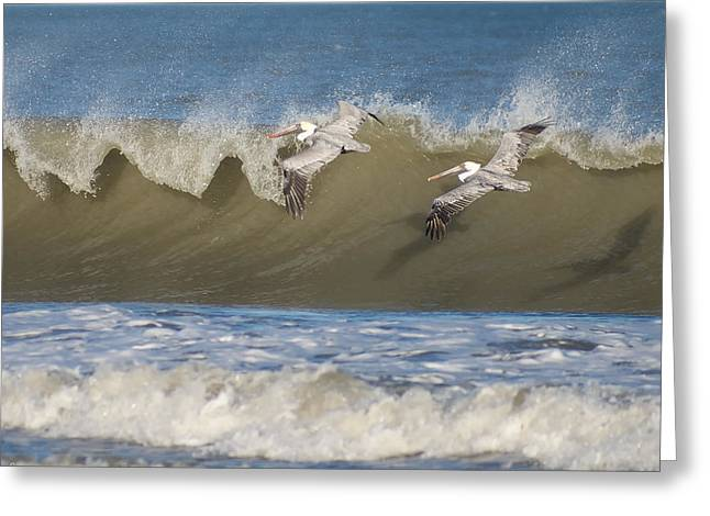 Greeting Card featuring the photograph Riding The Wave by Gregg Southard