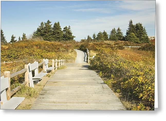 Ried State Park Beach Boardwalk On The Maine Coast Greeting Card