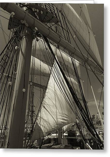 Rigging All Over Black And White Sepia Greeting Card