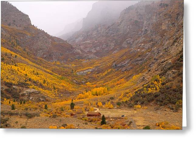 Fall Colors And Fog Greeting Card by Jenessa Rahn