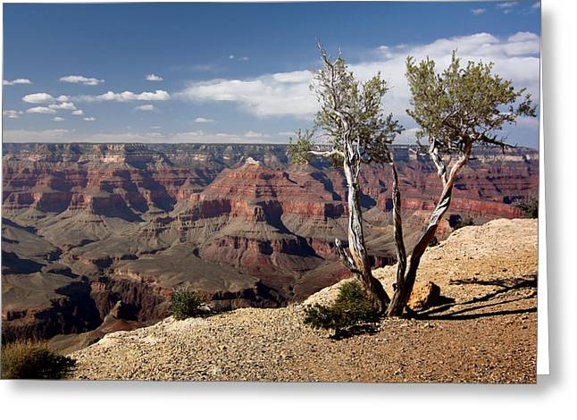 Rim Of The Grand Canyon Greeting Card