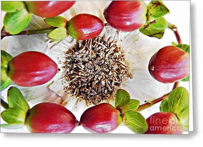 Ring Around The Garlic Greeting Card by Sarah Loft