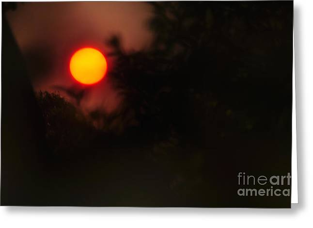 Ring Of Fire - Eerie Bushfire Sunset Greeting Card by Kaye Menner